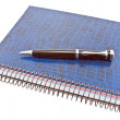 Foto Stock: Blue spiral notebook with pen