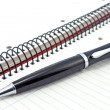 Notebook and pen — Stock Photo #25871325