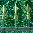 Golden spikes on iron fence over green plant — Stock Photo