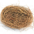 Stock Photo: Empty nest isolated on white