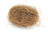 Empty nest isolated on white — Stock Photo