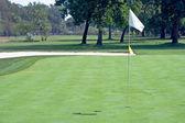 Golf flag waving — Stock Photo
