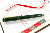 Fountain pen on personal organizer — Stockfoto