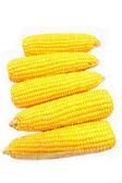 Corn isolated on white  — Stock Photo