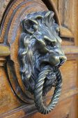 Lion Knocker — Stock Photo