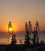 Gantry crane on a background of rising sun — Stock Photo