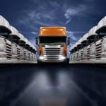 Постер, плакат: Trucks presentation