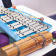 Xylophone — Stock Photo