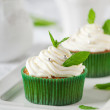 Sweet mint cupcake — Stock Photo