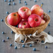 Fresh apple — Stock Photo