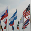 Flags of the world — Stock Photo #13675092