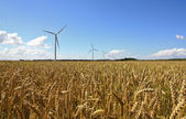 Agriculture landscape with wind turbines — 图库照片