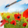 Poppy landscape painting — Stock Photo