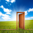 Home door open in a green clean field — Stock Photo