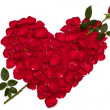 Heart shape made from red rose petals — Stock Photo