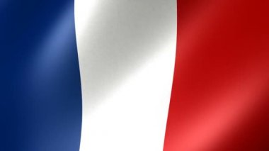 French flag — Stock Video