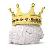 Corona en el cerebro — Foto de Stock