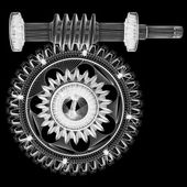 Wire frame gears — Stock Photo