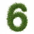 Arabic numeral made of grass — Stock Photo