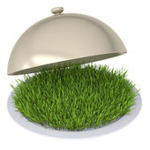 Green grass on a plate with a lid — Stockfoto