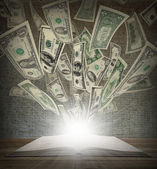 From an open book flied out money — Stockfoto