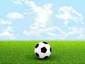 フィールドの真ん中にサッカー ボール — ストック写真