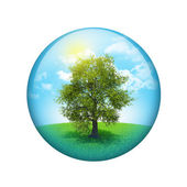 Trees and green landscape. Spherical glossy button — Stock Photo