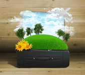 Earth with trees and green grass in travel bag — Stock Photo