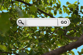 Search bar in browser — Foto Stock