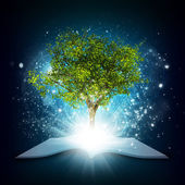 Open book with magical green tree and rays of light — Stock Photo