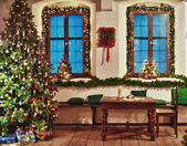 Celebrate Christmas in the Country — Stock Photo