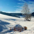 Winter Landscape with small Bridge - Stock Photo