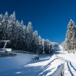 Foto Stock: Ski Resort in Austria