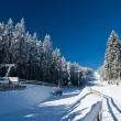 Stock Photo: Ski Resort in Austria