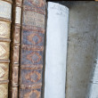 Antique Books in a Row — Stock Photo