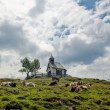 Chapel and Cows — Stock Photo
