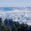 Village in Winter Landscape — Stockfoto