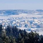 Village in Winter Landscape — Stock Photo