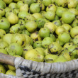 Basket full with Must Pears - Stock Photo