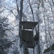 Hunting Tower in Winter Forest — Stock Photo