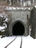 Entry of a Railway Tunnel — Stock Photo