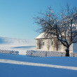 Farm in Winter Landscape — Stock Photo #18943145