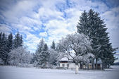Kışın Avusturyalı çiftlik evi — Stok fotoğraf