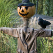 Scarecrow with Pumpkinface - Stock Photo