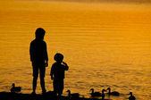 Two Children feeding the Duck — Stock Photo