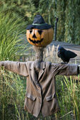 Scarecrow with Pumpkinface — Stock Photo