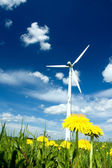Wind Turbine in a Summer Meadow — Stock Photo