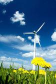 Wind Turbine in a Summer Meadow — Stock Photo