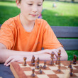 Boy play Chess with Concentration — Stock Photo #20692009