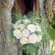 Bridal Bouquet in a Tree — Stockfoto
